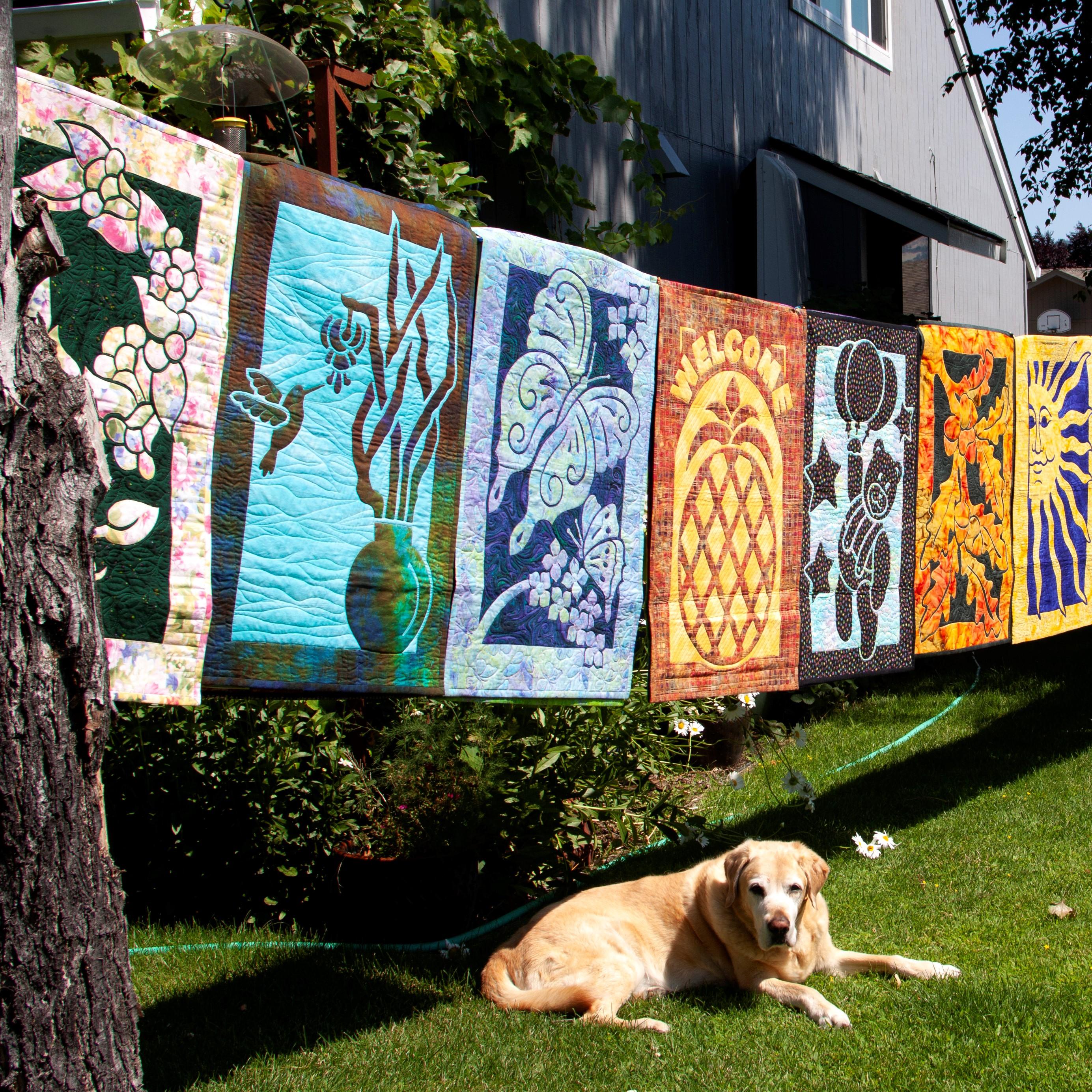 Backyard Quilt Show