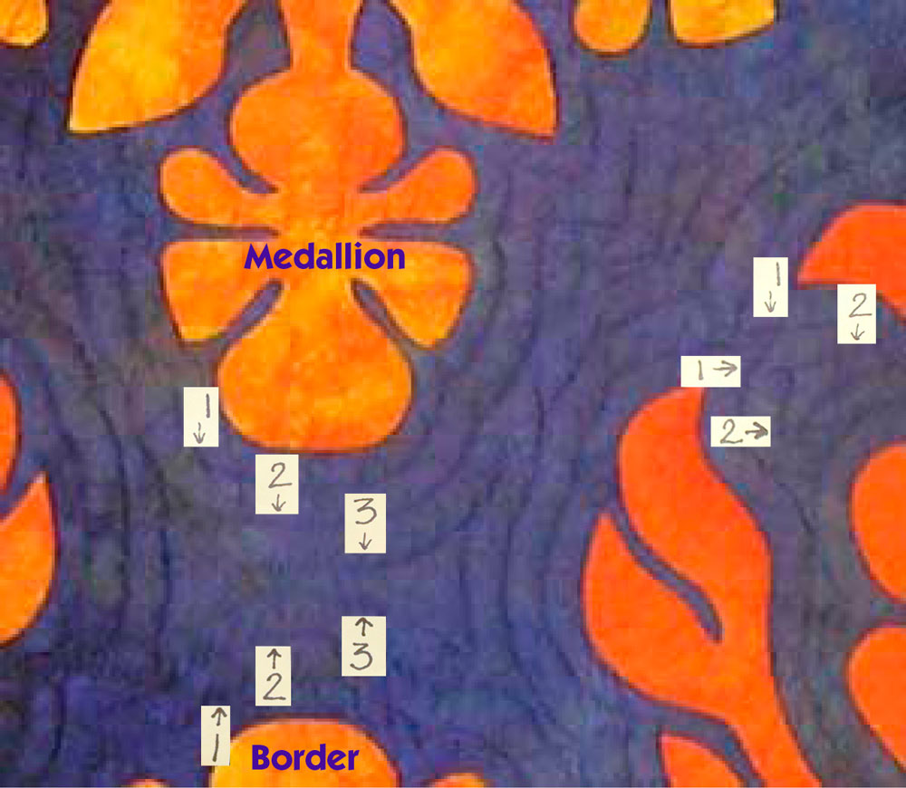Ochid Oasis Echo quilting lines